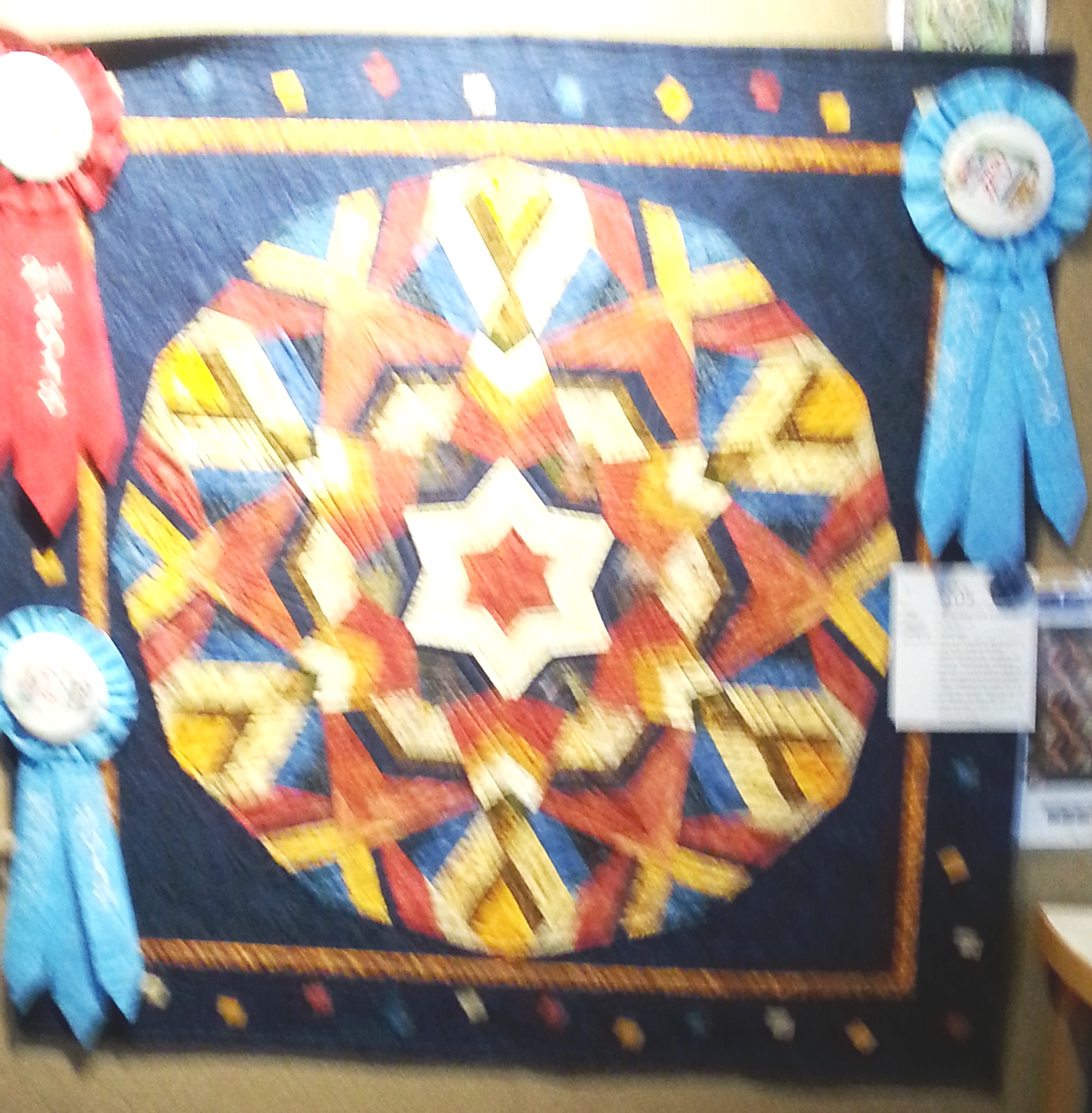Best Machine Quilting and 2nd Place - Challenge